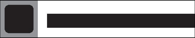 The Whitestone Group logo
